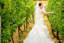 20120204wineyard_wedding005