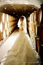 20120204wineyard_wedding006