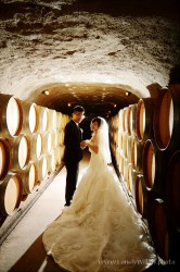 20120204wineyard_wedding007