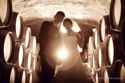 20120204wineyard_wedding012