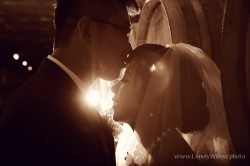 20120204wineyard_wedding016