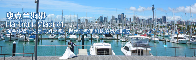 Auckland 海港 Viaduct Harbour